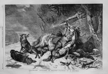 """""""Traveller Attacked by Wolves."""""""