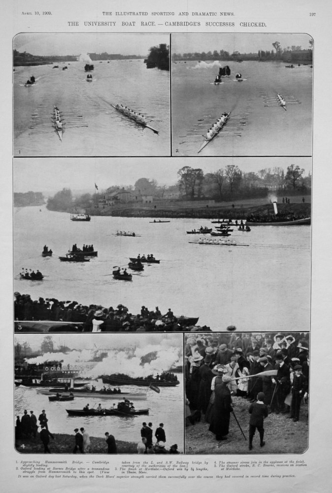 The University Boat Race. - Cambridge's Successes Checked. 1909.