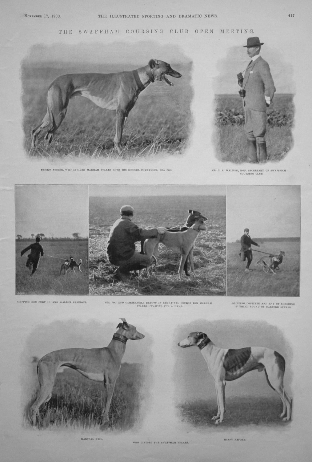 The Swaffam Coursing Club Open Meeting. Dogs. 1900