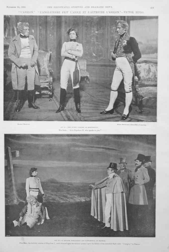 """""""L'Aiglon."""" """"L'Angleterre Prit L'Aigle Et L'Autriche L'Aiglon."""" - Victor Hugo."""