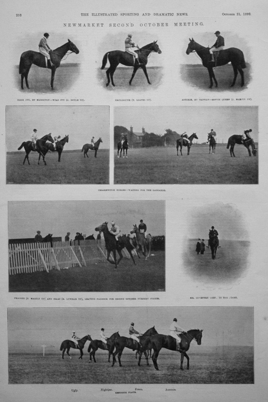 Newmarket Second October Meeting. 1899