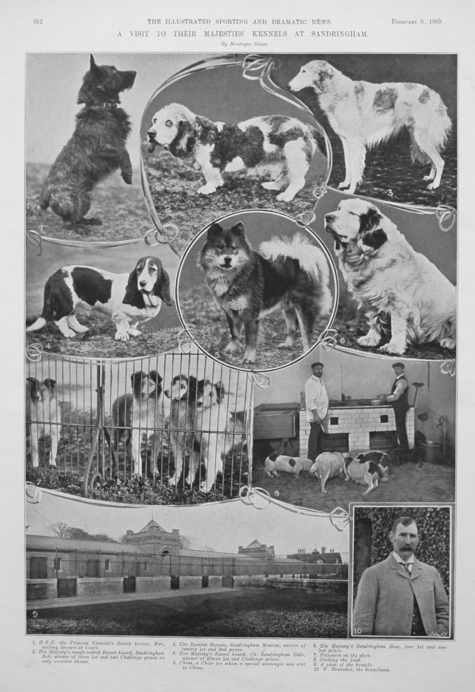 A Visit to Their Majesties' Kennels at Sandringham. 1909