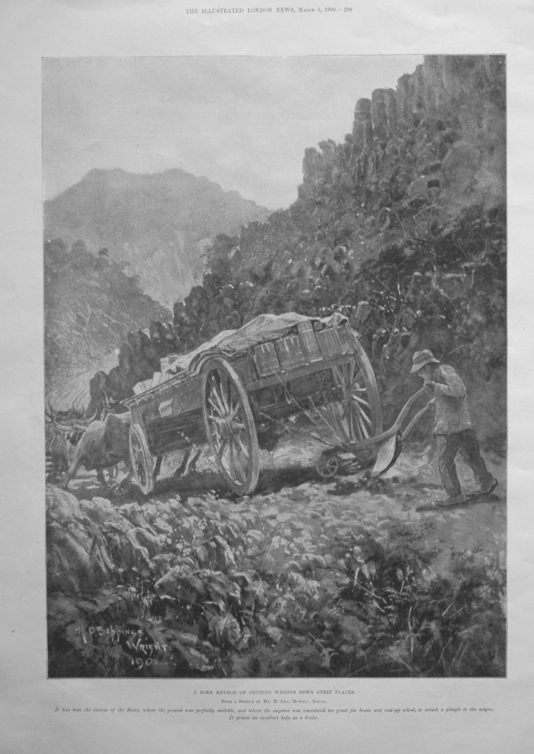 A Boer Method of getting Wagons down Steep Places. 1900