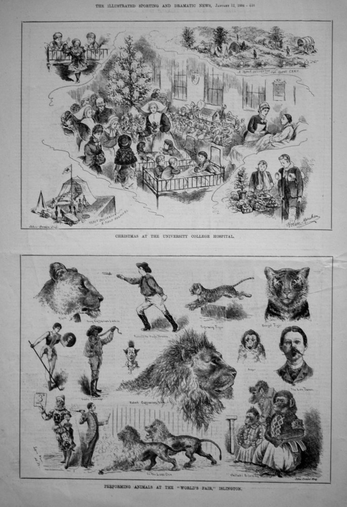 Christmas at the University College Hospital. 1884