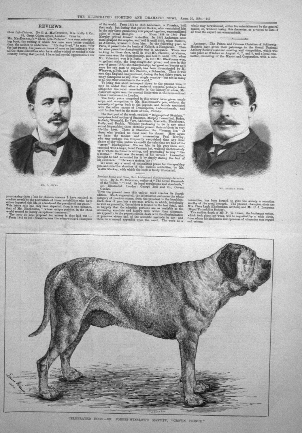 Celebrated Dogs. -Dr. Forbes-Winslow's Mastiff,