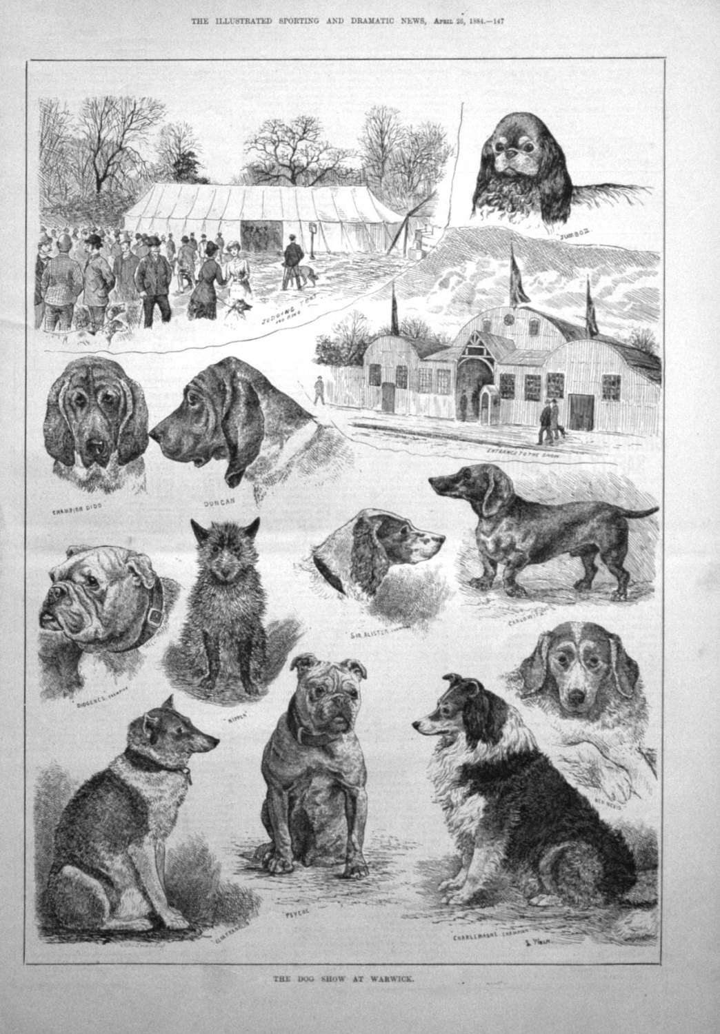 The Dog Show at Warwick. 1884