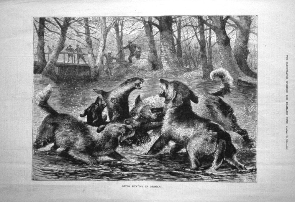 Otter Hunting in Germany. 1884