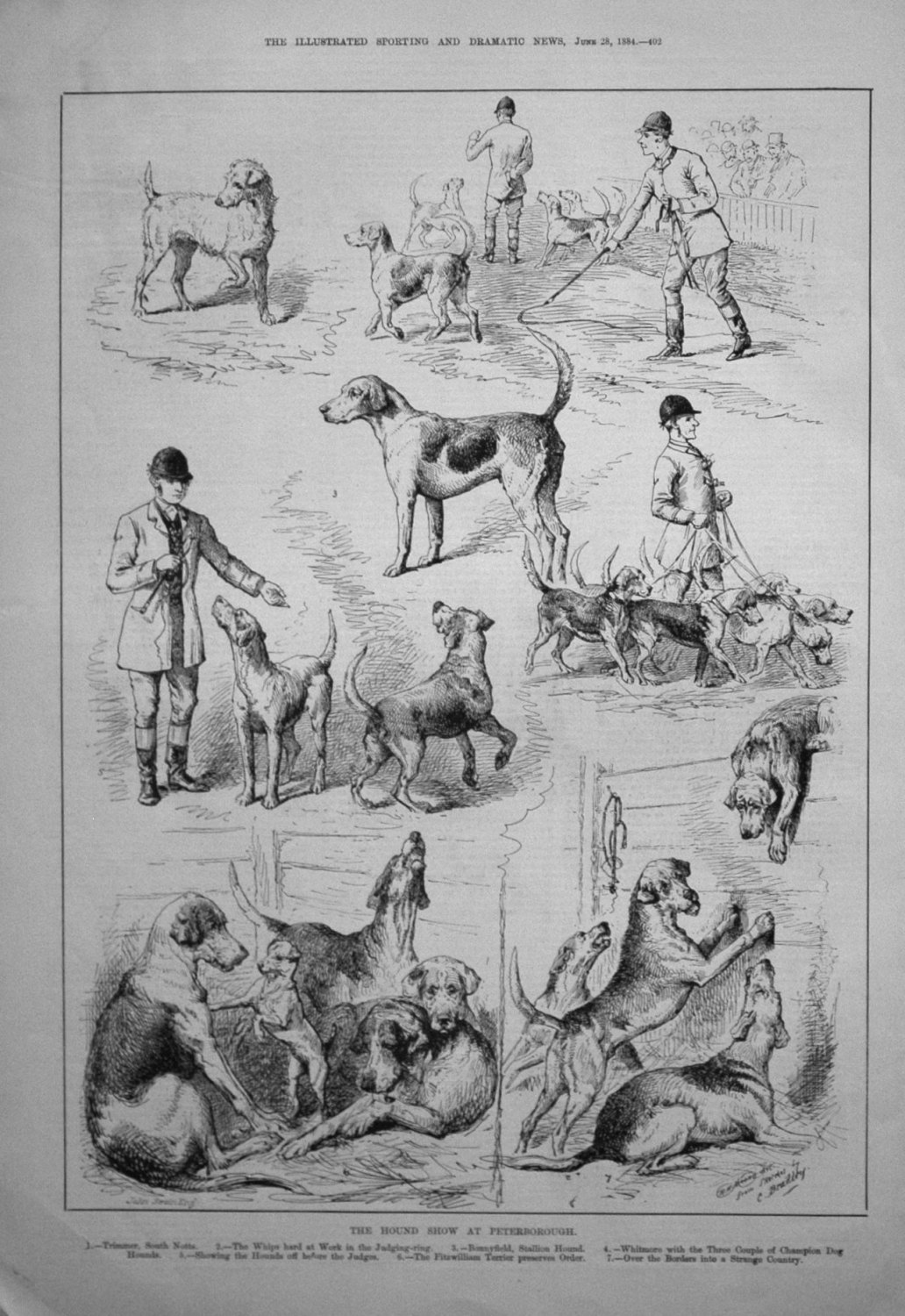 The Hound Show at Peterborough. 1884