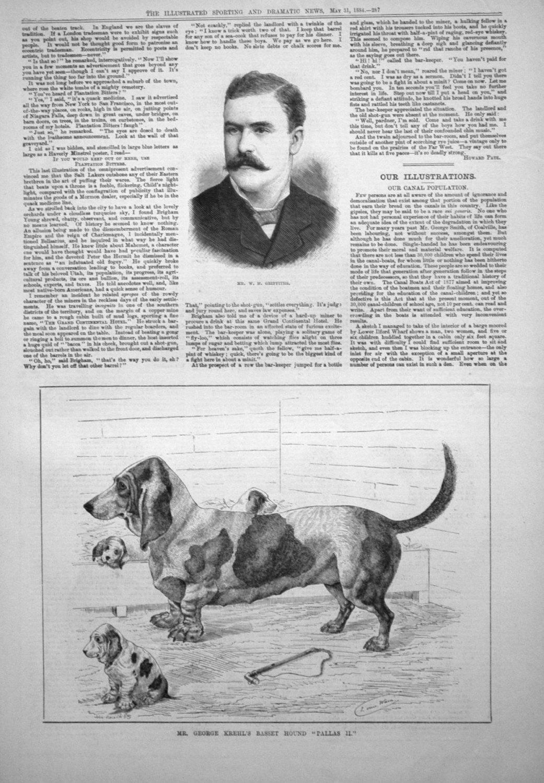 Mr. George Krehl's Basset Hound