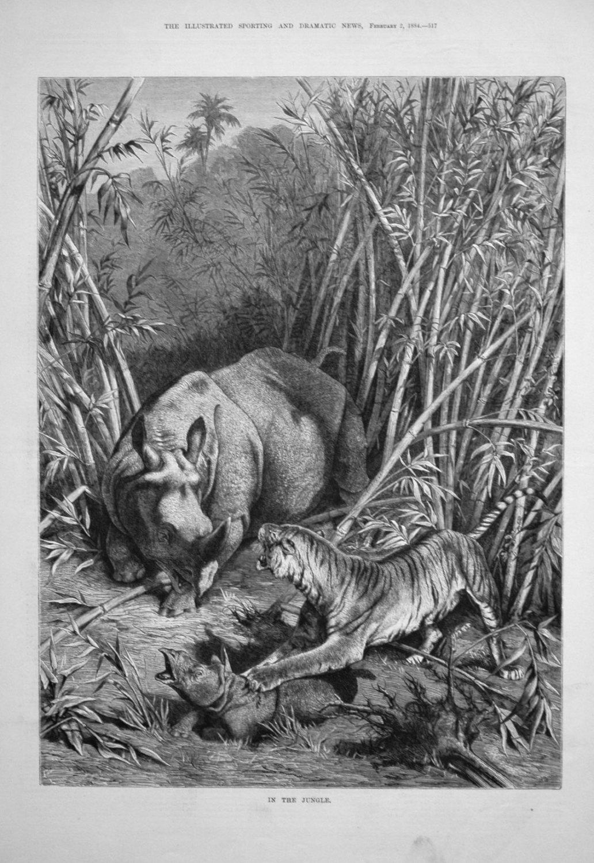 In the Jungle. 1884