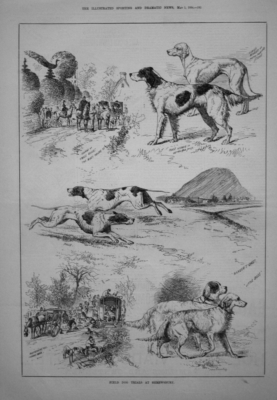 Field Dog Trials at Shrewsbury. 1884