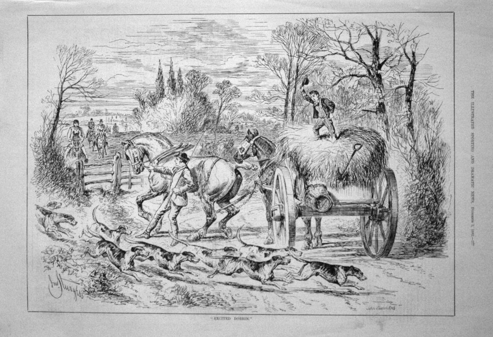"""Excited Dobbin."" 1882"