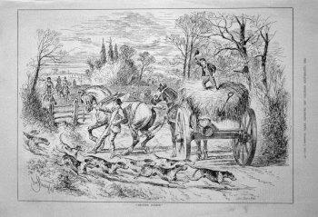 """Excited Dobbin."" 1882"