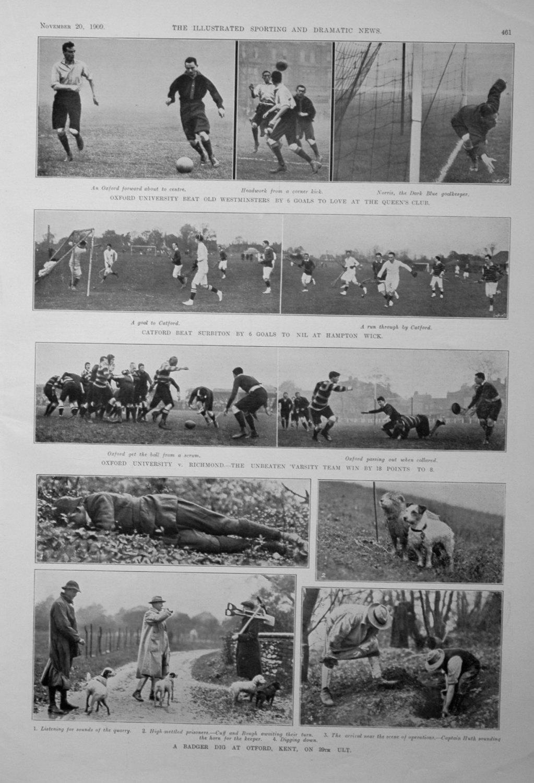 A Badger Dig at Otford, Kent, on 29th ult. 1909