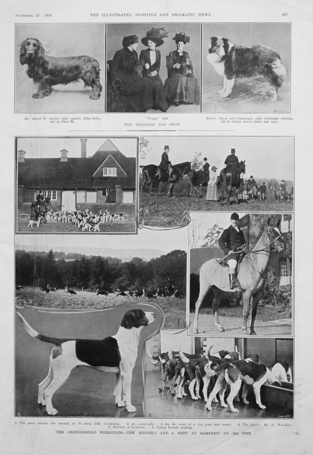 The Chiddingfold Foxhounds. - The Kennels and a Meet at Ramsnest on 2nd ins