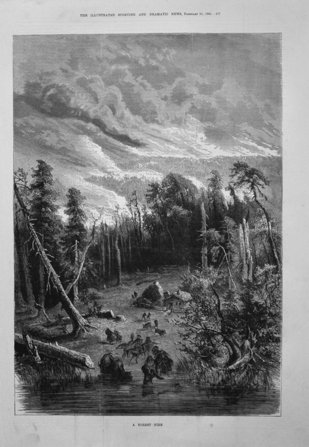 A Forest Fire. 1881