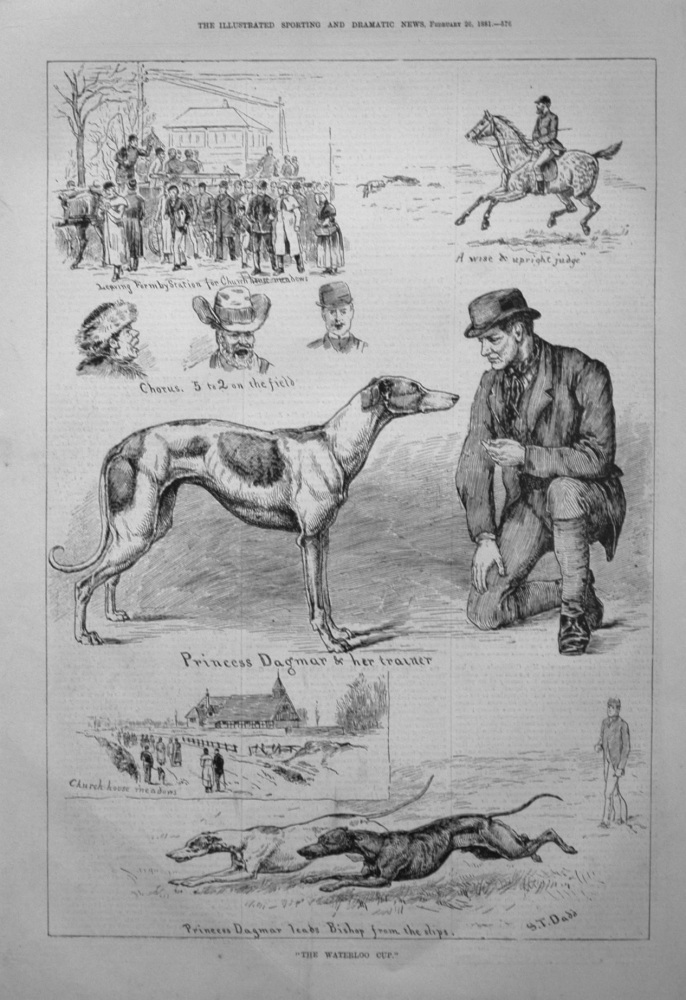 """""""The Waterloo Cup."""" 1881"""