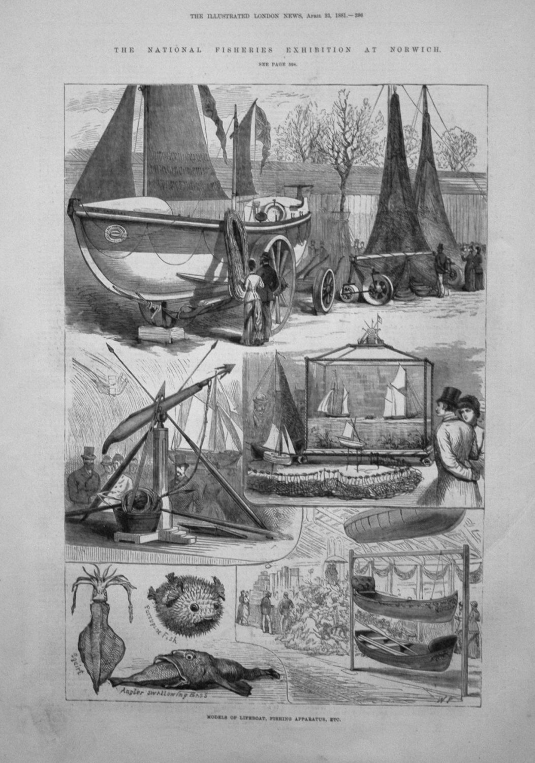 The National Fisheries Exhibition at Norwich. 1881