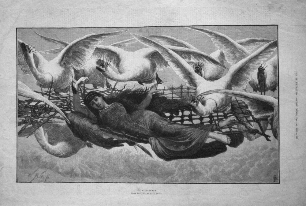 The Wild Swans. From the Picture by J. Scott. 1882