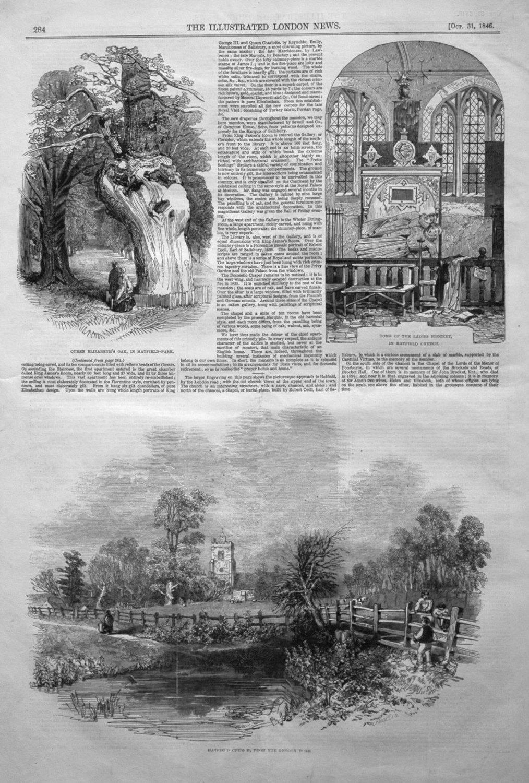 Queen Elizabeth's Oak in Hatfield Park. 1846