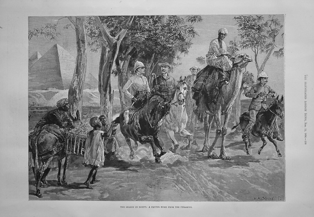 The Season in Egypt : A Canter Home from the Pyramids. 1896