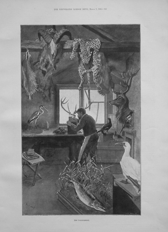 The Taxidermist. 1896