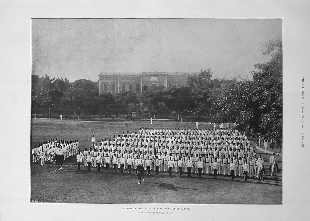 The Egyptian Army : An Infantry Battalion on Parade. 1896