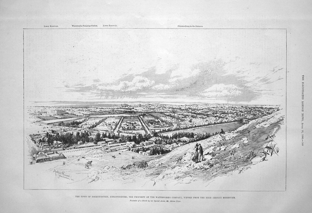The Town of Doornfontein, Johannesburg, the Property of the Waterworks' Com