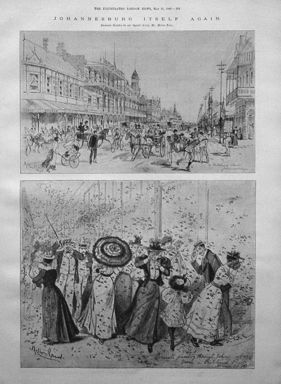 Johannesburg Itself Again. 1896