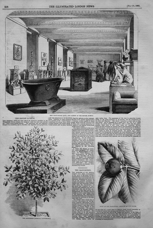 The British Museum. 1855
