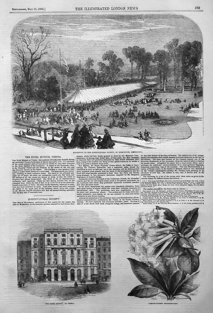 Exhibition of the Horticultural Society, at Gore-House, Kensington. 1855
