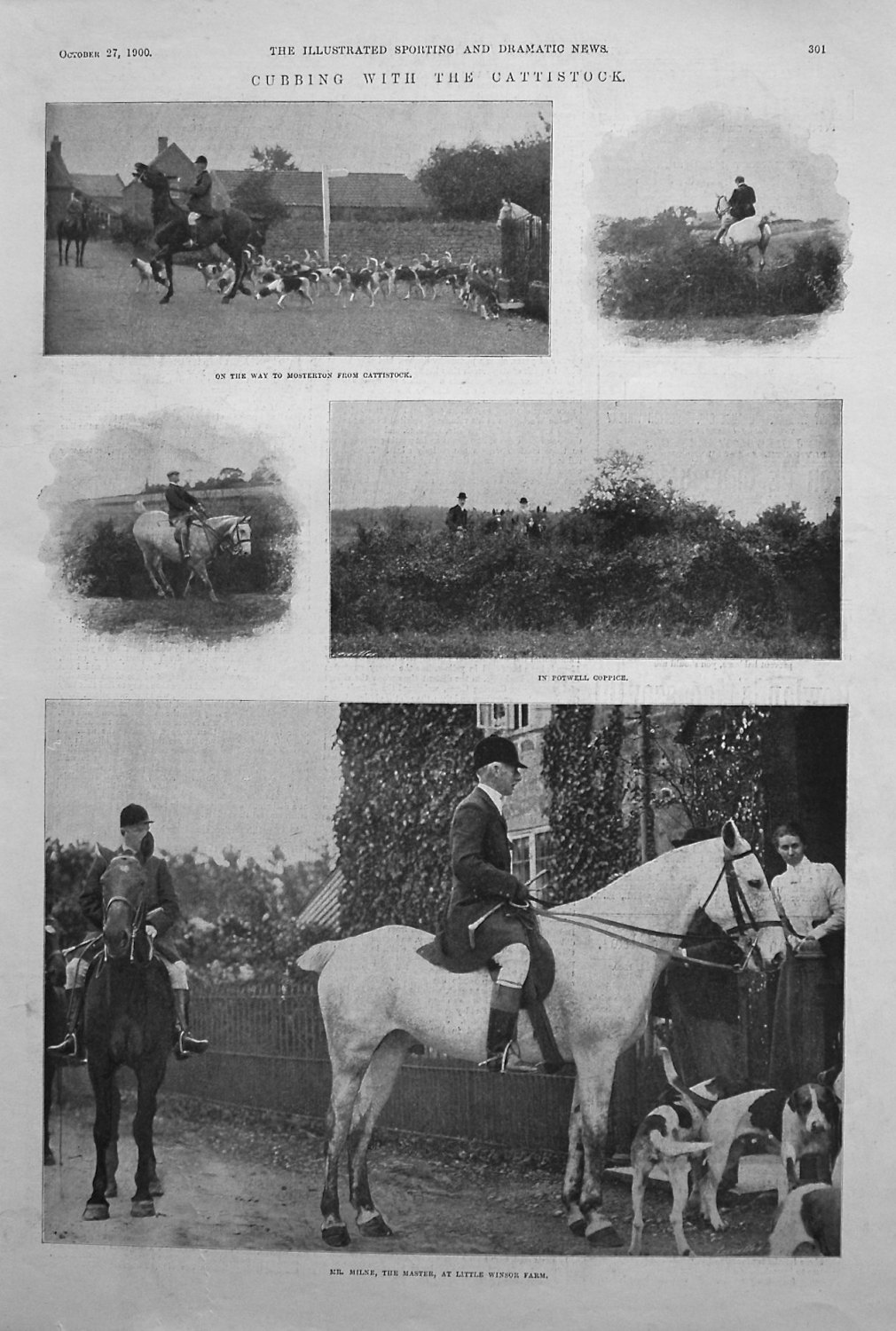Cubbing with the Cattistock. 1900