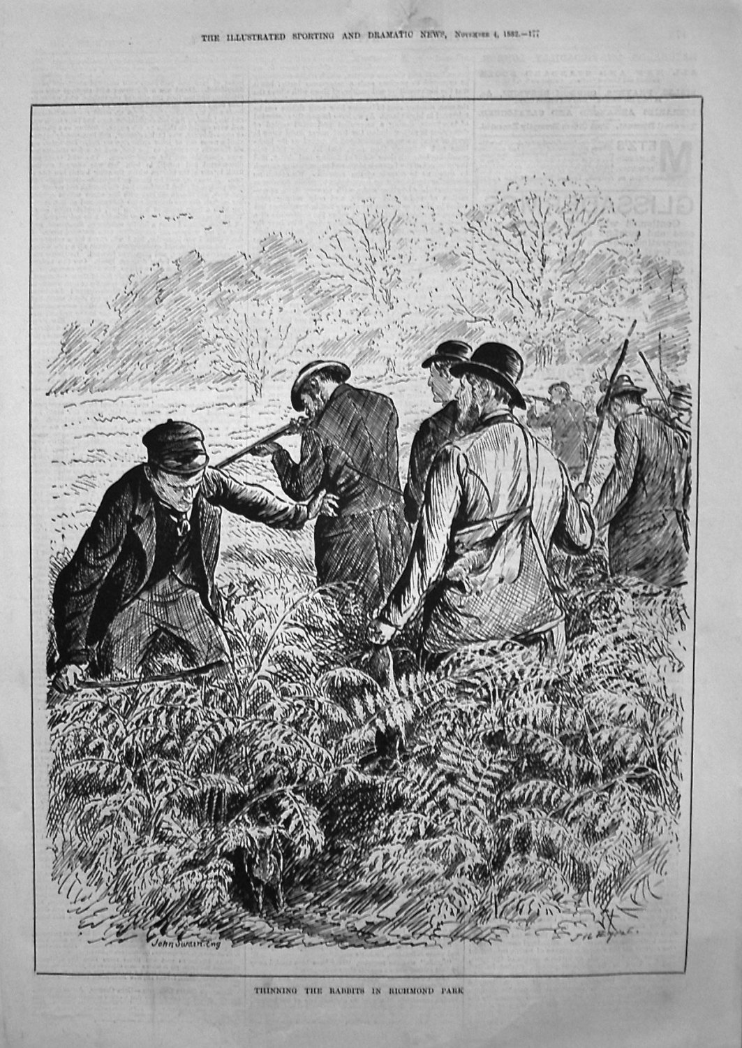 Thinning the Rabbits in Richmond Park. 1882