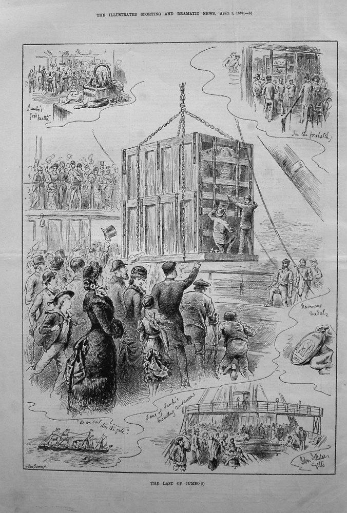 The Last of Jumbo (?) 1882