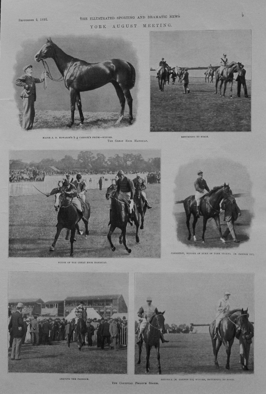 York August Meeting. 1899