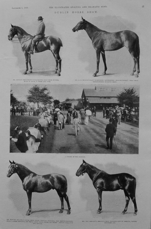 Dublin Horse Show. 1899
