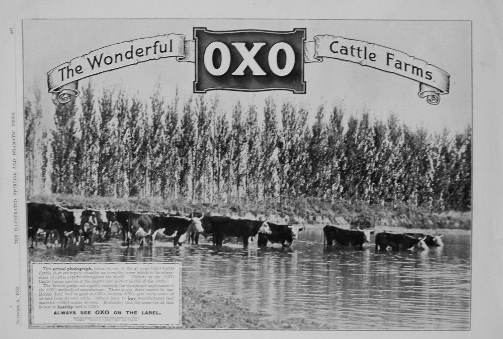 Oxo. 1909