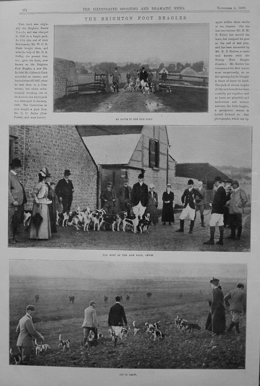 The Brighton Foot Beagles. 1899