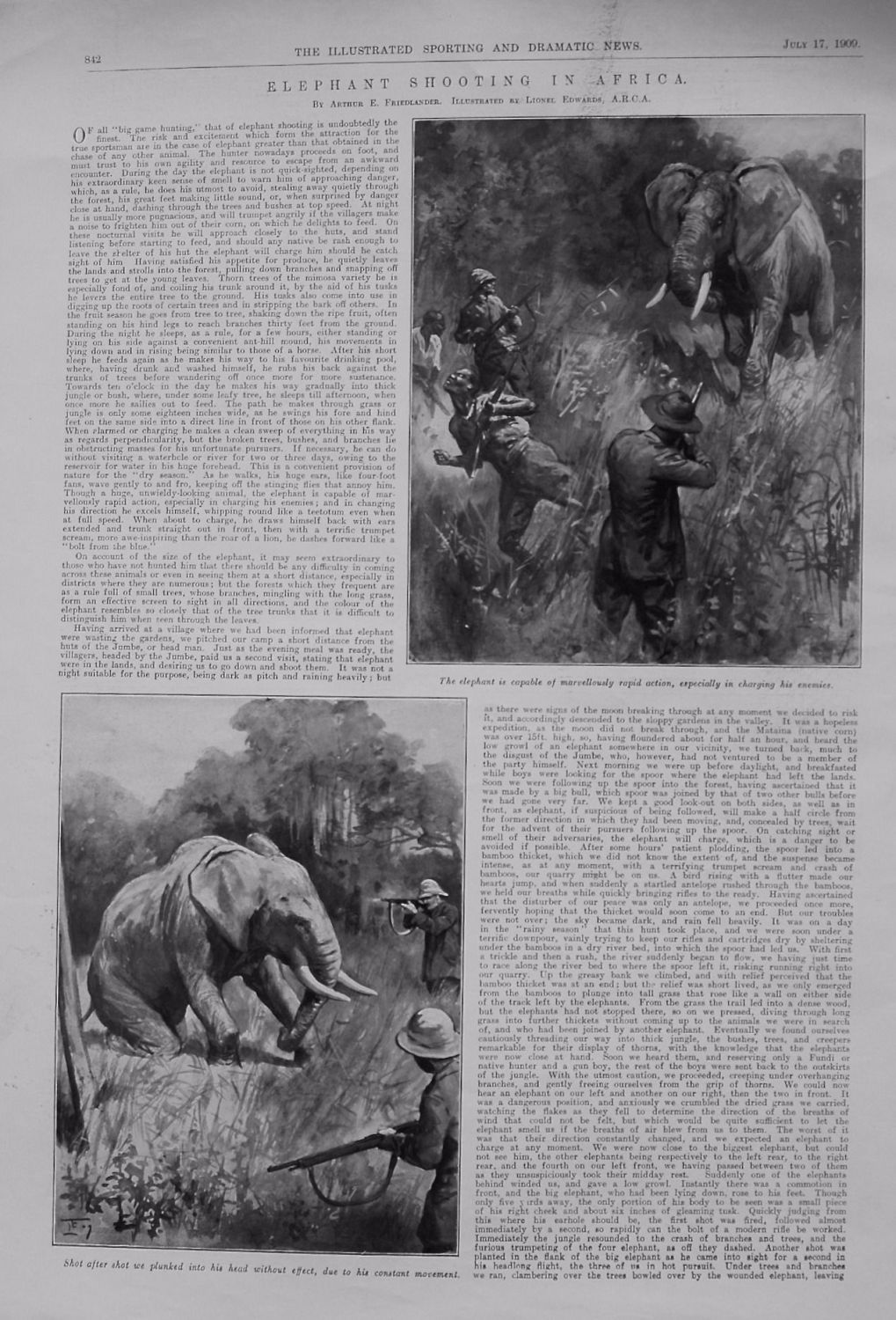 Elephant Shooting in Africa. 1909
