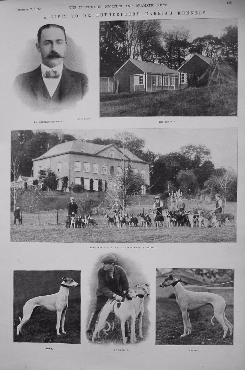 A Visit to Dr. Rutherford Harris's Kennels. 1899