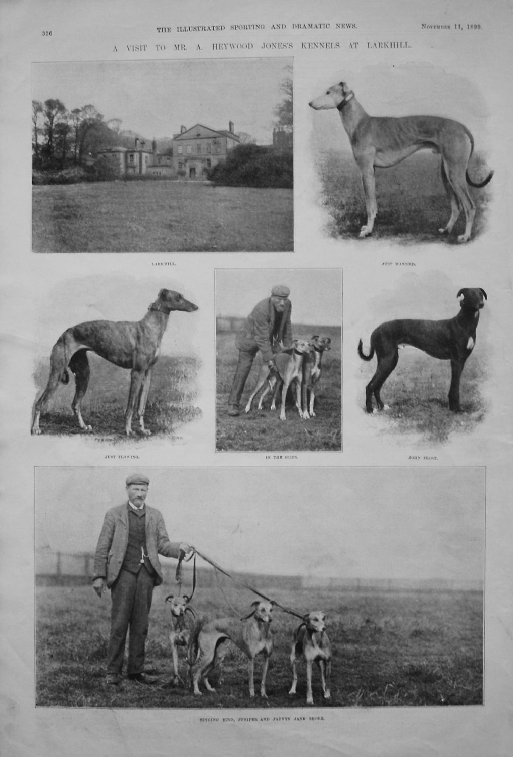 A Visit to Mr. A Heywood Jones's Kennels at Larkhill. 1899