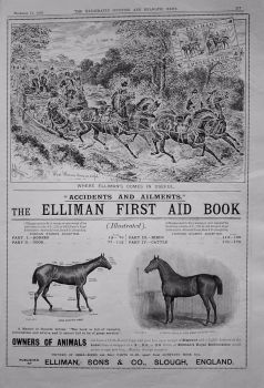 Elliman, Sons & Co. 1899