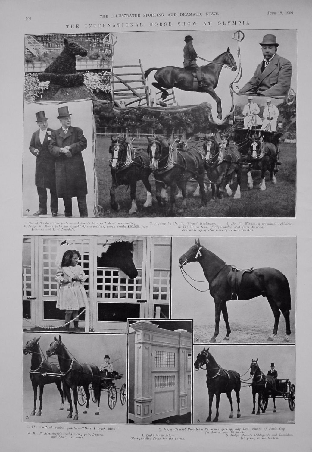 International Horse Show at Olympia. 1909