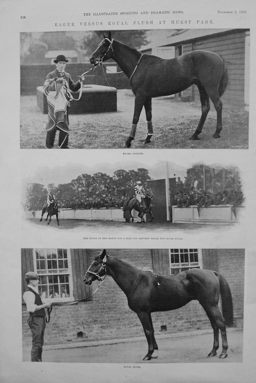 Eager versus Royal Flush at Hurst Park. 1900