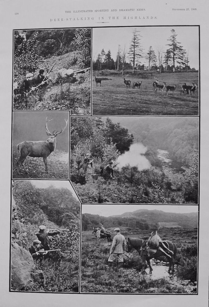Deer-Stalking in the Highlands. 1909