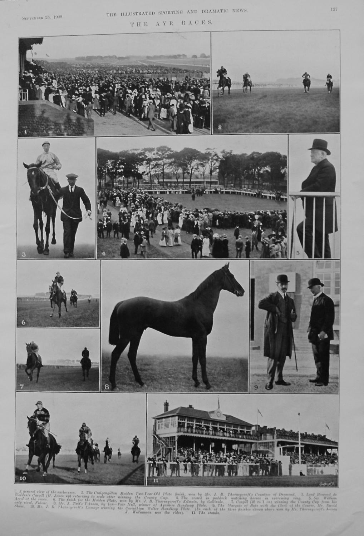 Ayr Races. 1909