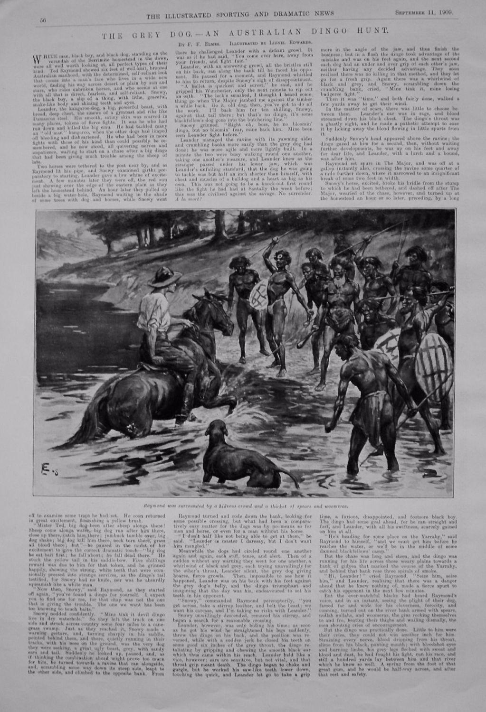 The Grey Dog. - An Australian Dingo Hunt. 1909