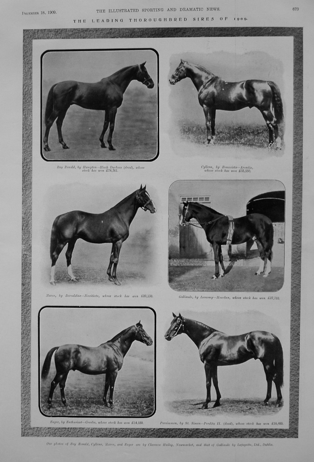 Leading Thoroughbred Sires of 1909.