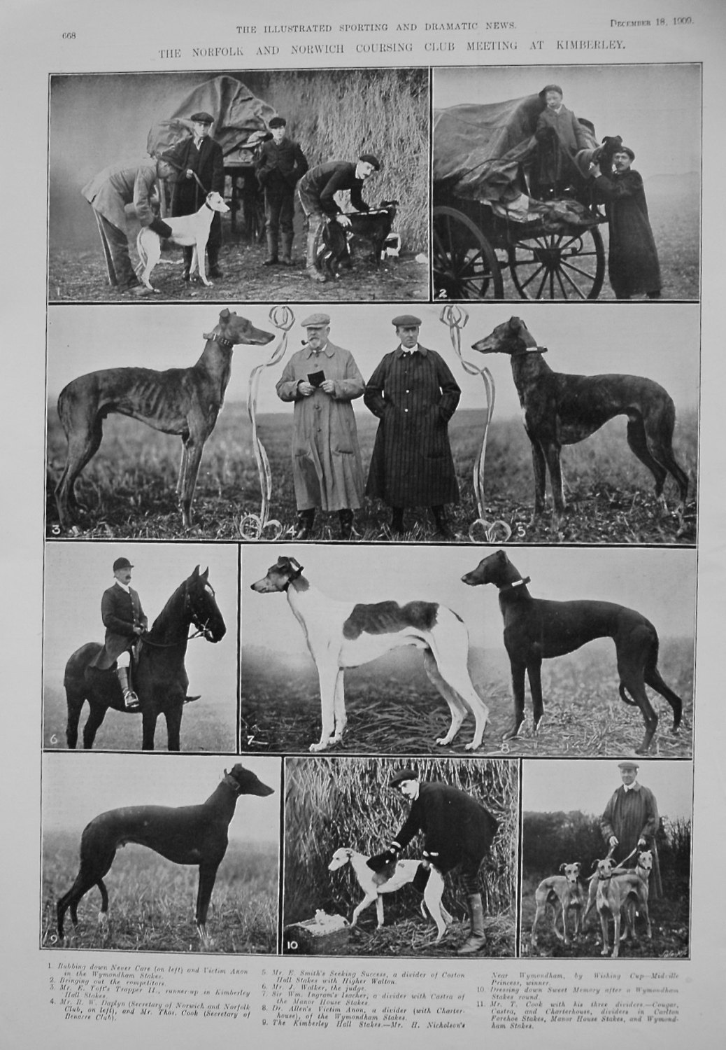 Norfolk and Norwich Coursing Club Meeting at Kimberley. 1909