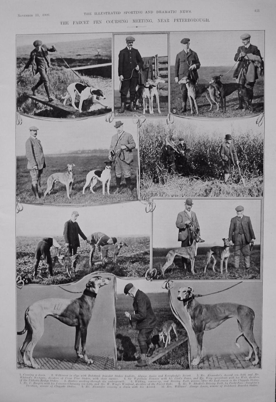 Farcet Fen Coursing Meeting, Near Peterborough. 1909